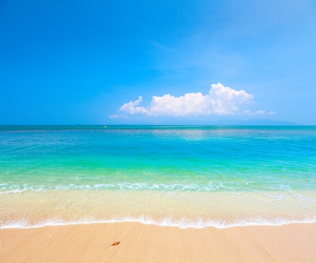 beach and tropical sea. Koh Samui, Thailand photo