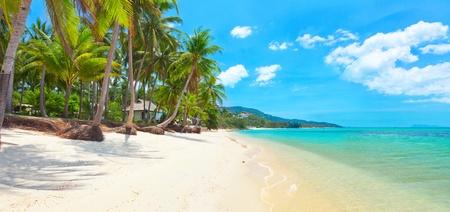 tropisch strand Bang Po, Koh Samui, Thailand. panorama
