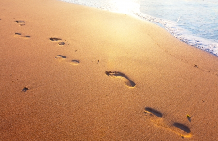 footprints in the sand: beach, wave and footsteps
