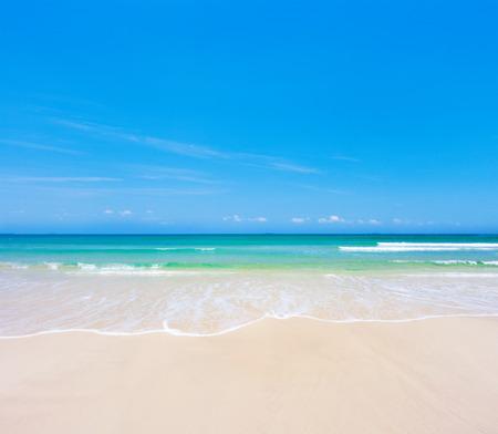 beach paradise: beach and sea