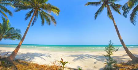 beach hut: tropical beach with coconut palm Stock Photo