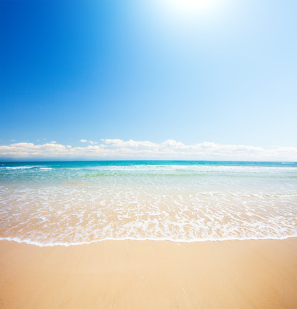 sea beach: beach and tropical sea