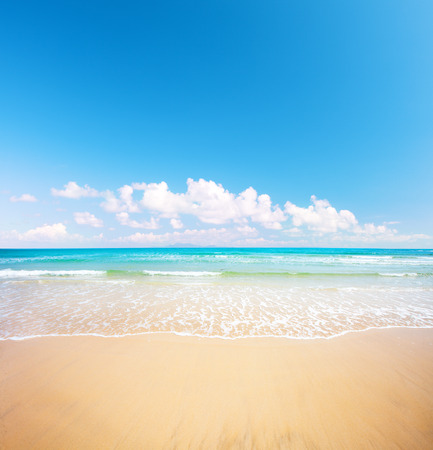 backdrop colorful: beach and tropical sea
