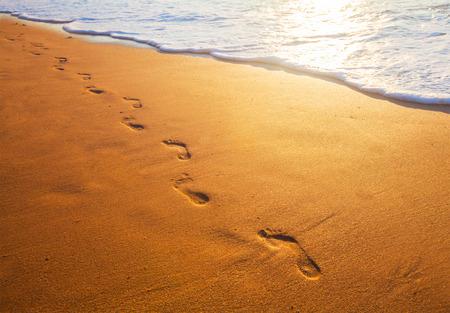 plaża, fala, a ślady w czasie zachodu słońca