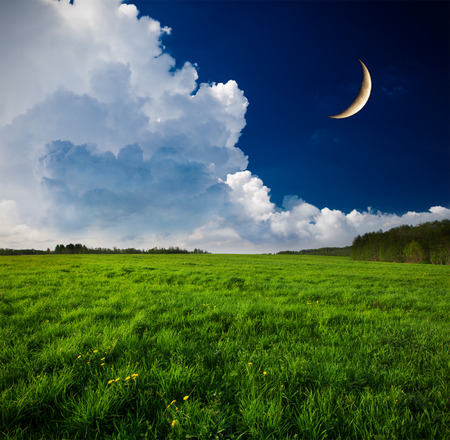 sky and grass: Night and the moon on a green field Stock Photo