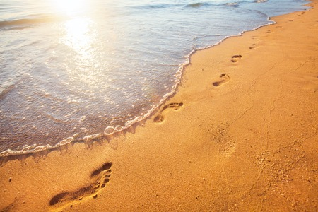 shore: beach, wave and footprints at sunset time