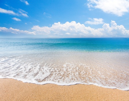 ビーチと熱帯の海
