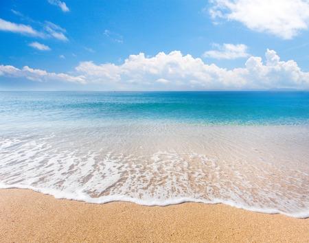 scene: beach and tropical sea