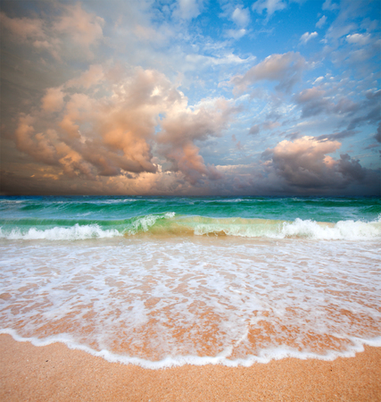stormy sea: beach and stormy sea