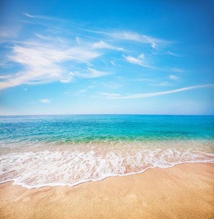 sandy beach and tropical sea