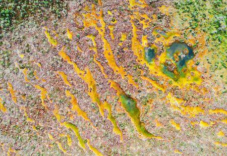 Beautiful Autumn Swamp Aerial View