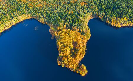 aerial view of autumn forest and lake Stock Photo