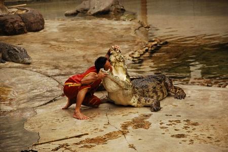 The Crocodylidae or crocodile show in Thailand on 9 May 2009.