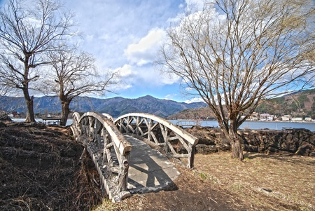 A bridge and tree in the Japanese garden hdr Stock Photo - 13205755