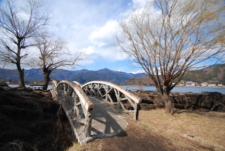A bridge and tree in the Japanese garden