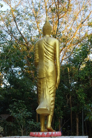 back of golden buddha statue in Thailand