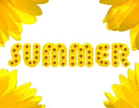 Summer Text made with sunflowers isolated on background photo