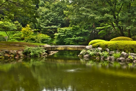 Japanese garden wood bridge surrounded by green foliage in hdr