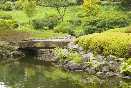 The bridge in Japanese garden during fall season photo