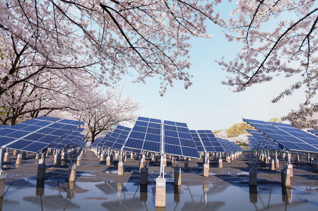 solar power plant: Renewable solar power plant in the spring under the cherry trees Stock Photo