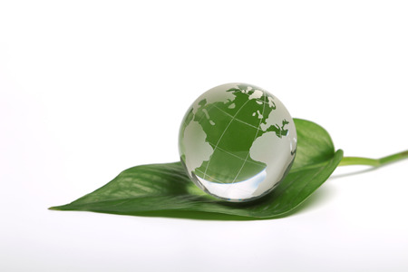 Environment concept, glass globe on the leaves photo
