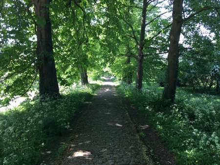 The Causeway in Steventon, Oxfordshire 写真素材
