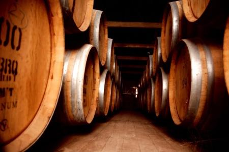 Cave à vin Banque d'images - 31522643