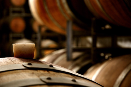 wine stocks: Photo of historical wine barrels stacked in winery cellar