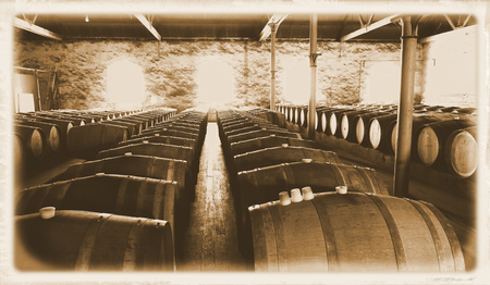 barossa: Last Century photo of historical wine barrels in winery storage area featuring rows of oak barrels after vintage and harvest. Areas include barossa valley, clare valley, Coonawarra, Hunter Valley, McLaren Vale Stock Photo