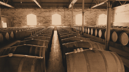 barossa: Sepia photo of historical wine barrels in winery storage area featuring rows of oak barrels after vintage and harvest. Areas include barossa valley, clare valley, Coonawarra, Hunter Valley, McLaren Vale Stock Photo