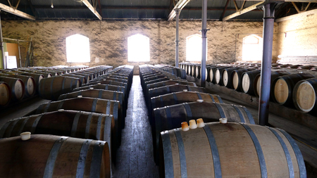 wine stocks: Photo of historical wine barrels in winery storage area featuring rows of oak barrels after vintage and harvest.