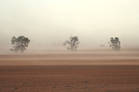 Dust storm in outback Australia on rural farm with crops in paddock in Mallee Stock Photo