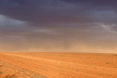 outback australia: Dust storm in outback Australia on rural farm with crops in paddock in Mallee Stock Photo