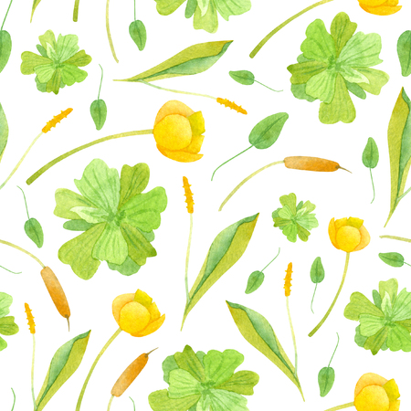 Watercolor wetland floral pattern with yellow nuphar lutea orontium and green pistonia on white background Stock Photo