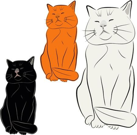 고양이, 애완 동물, 벡터 드로잉, 그림입니다. 고양이의 조각.