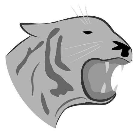 An a vector illustration of Big Cat   Files included  Illustrator 8 EPS  and JPG  Stock Vector - 18219357