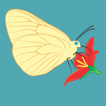 An a vector illustration of butterfly on a flower    Files included  Illustrator 8 EPS  and JPG Vector