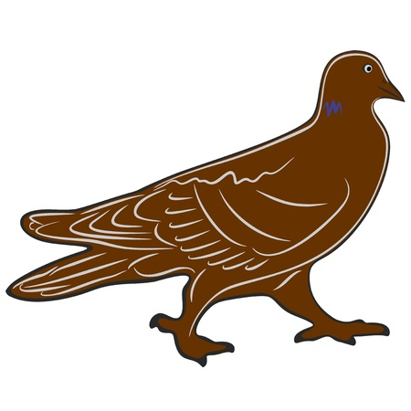 animals feeding: An a vector illustration of Dove   Files included  Illustrator 8 EPS  and JPG
