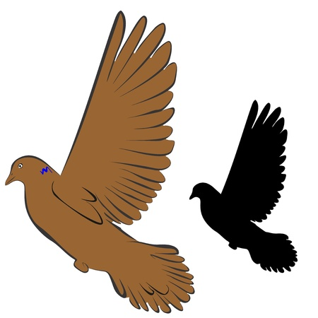 An a vector illustration of Dove   Files included  Illustrator 8 EPS  and JPG