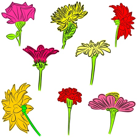 An a vector illustration of Flowers   Files included  Illustrator 8 EPS  and JPG