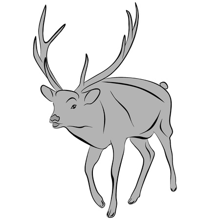An a vector illustration of Deer   Files included  Illustrator 8 EPS  and JPG Stock Vector - 18219327