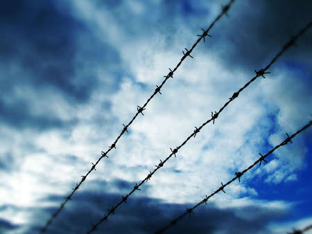 Barbed Wire Stock Photo - 358268