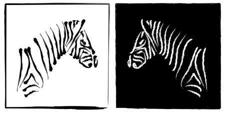 opposites: Black and White Zebras