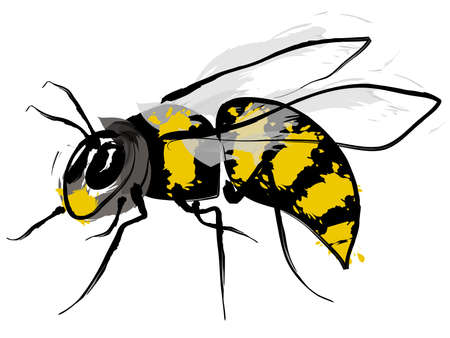 sting: Bumble bee