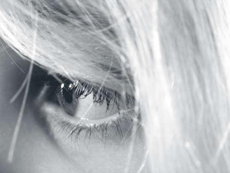 chłopięctwo: Childs Eye