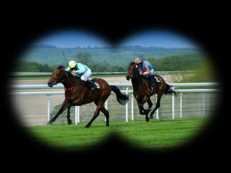 racehorses: Race Horses