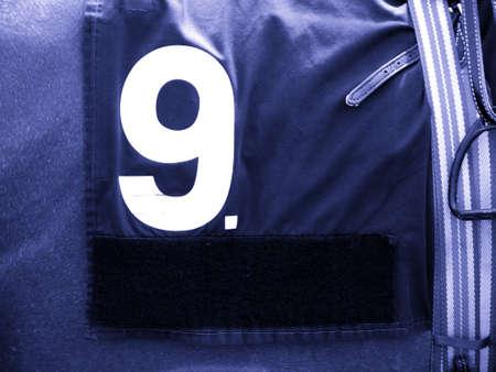 racehorses: Nummer 9 Race Horse