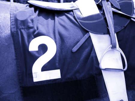 Nummer 2 Horse Race  Lizenzfreie Bilder