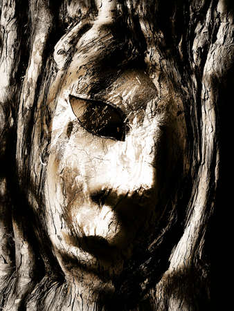 ghost face: Face in Tree bark Stock Photo