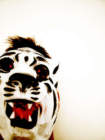 papoose: tiger mask